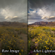 Lightroom: Intelligent & Professional Landscape Photo Raw Processing