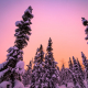 winter-sunset-alaska